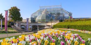 Kebun konservatori dan botani